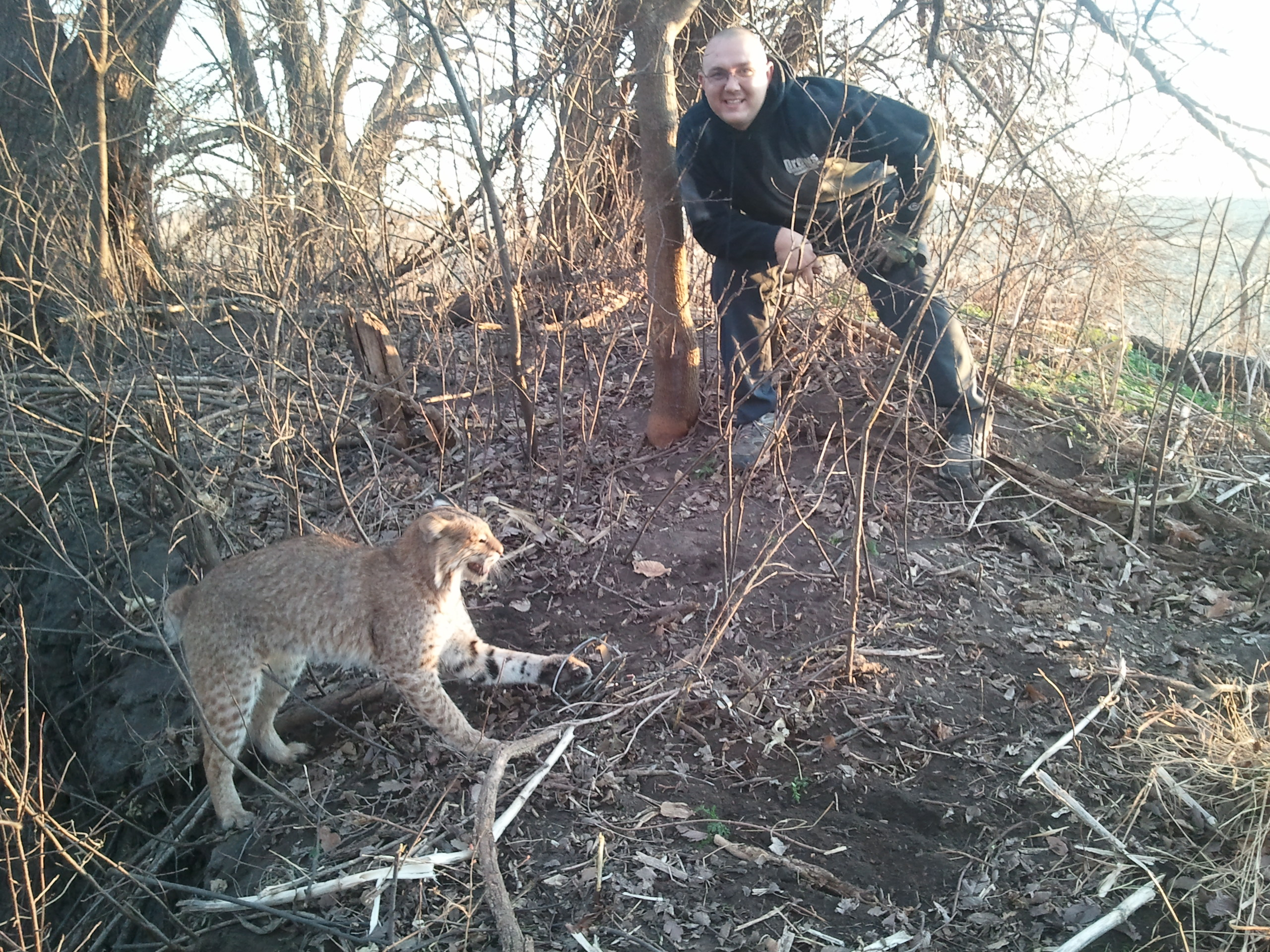 Will Dog Proof Traps Catch Cats