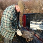 Tactical 5x5 Coon Trapping by Scott Adams
